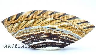 Yalos 9162 Блюдо большое Shell 30х15см муранское стекло